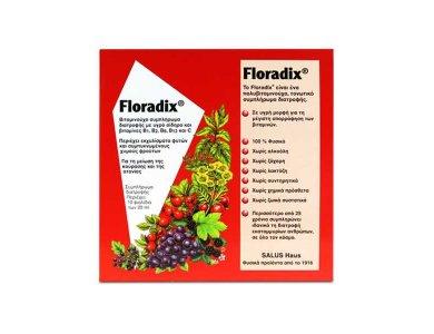 Power Health Floradix Συμπλήρωμα Διατροφής Για Την 'Ελλειψη Σιδήρου 10x20ml Φιαλίδια
